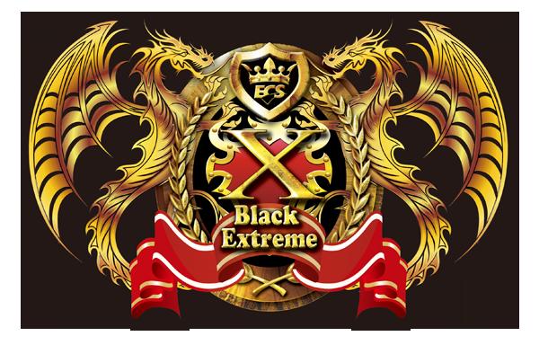 ECS_Z77H2-A2X_Badge