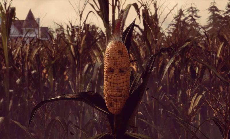 maize 3