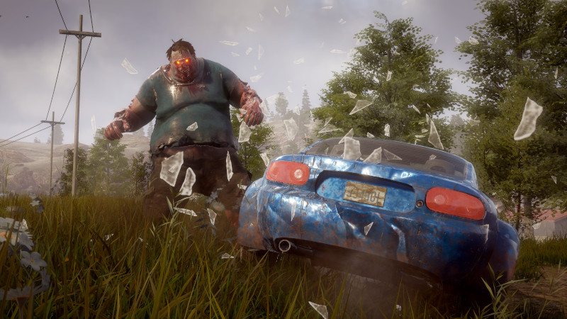 state of decay 2 05
